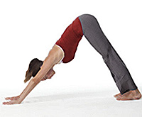 5 Major Reasons to Use Wrist Supports In Your Yoga Routine